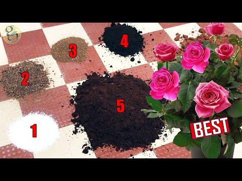 PERFECT POTTING SOIL MIX FORMULA FOR ALL PLANTS