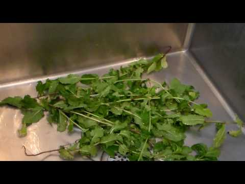 How To Clean Mint Leaves