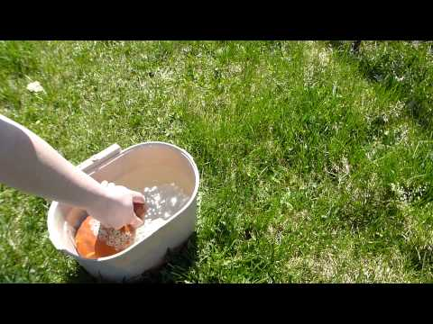 Video 1 - Thumb Waterer