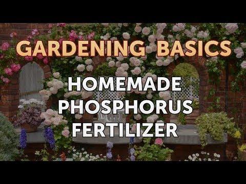Homemade Phosphorus Fertilizer