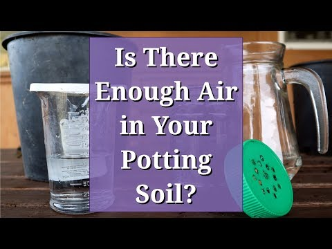 Is There Enough Air in Your Potting Soil?