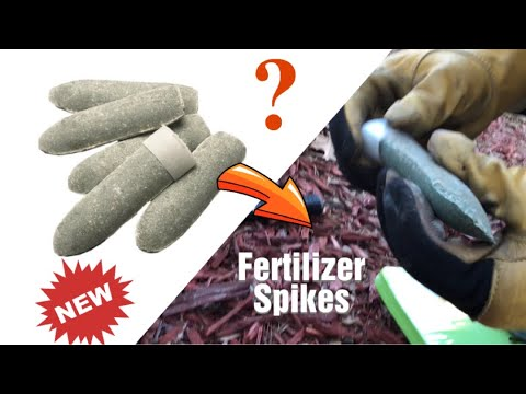 How to install fertilizer spikes & how they work.