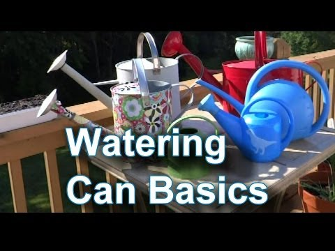 How to Choose and Use a Watering Can & Container Garden Watering
