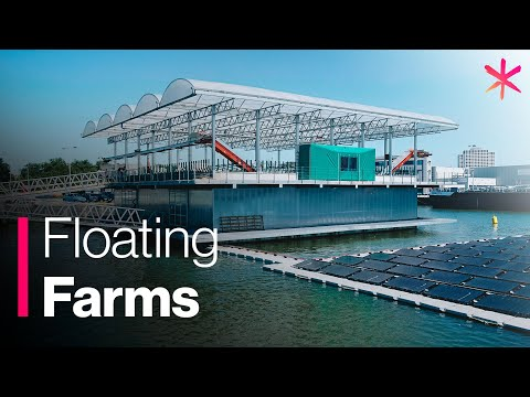 Floating Farm Takes Sustainable Agriculture to the Next Level