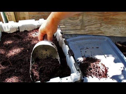Harvesting Worm Castings   Highly Effective Method For Separating Out The Worms!