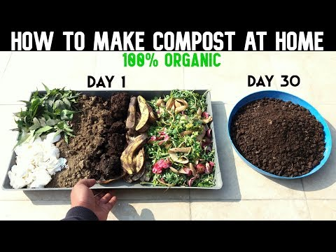 How To Make Compost At Home (WITH FULL UPDATES)
