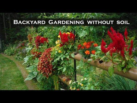 Hydroponics Mixed Vegtables & Flowers - Solar Powered Backyard Gardening Flood & Drain System